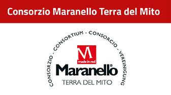 Banner Consorzio